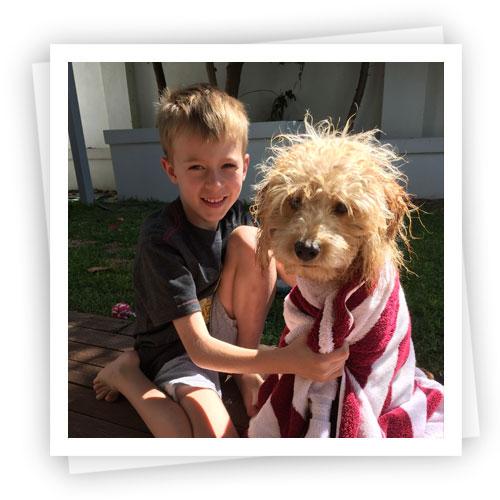Waratah-Puppies-9