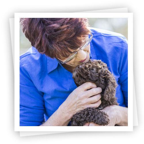 Waratah-Park-Puppies
