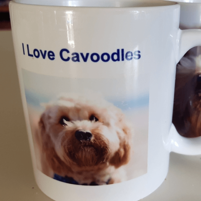 cavoodle coffee mug with photo