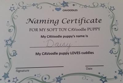 naming certificate